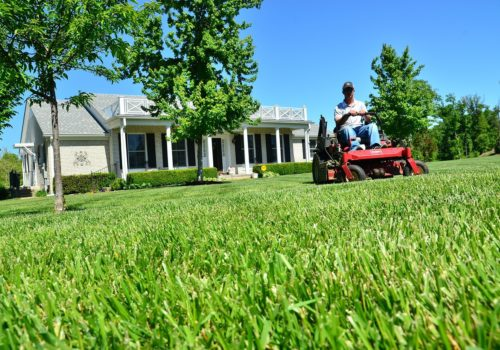 Staff mowing the lawn