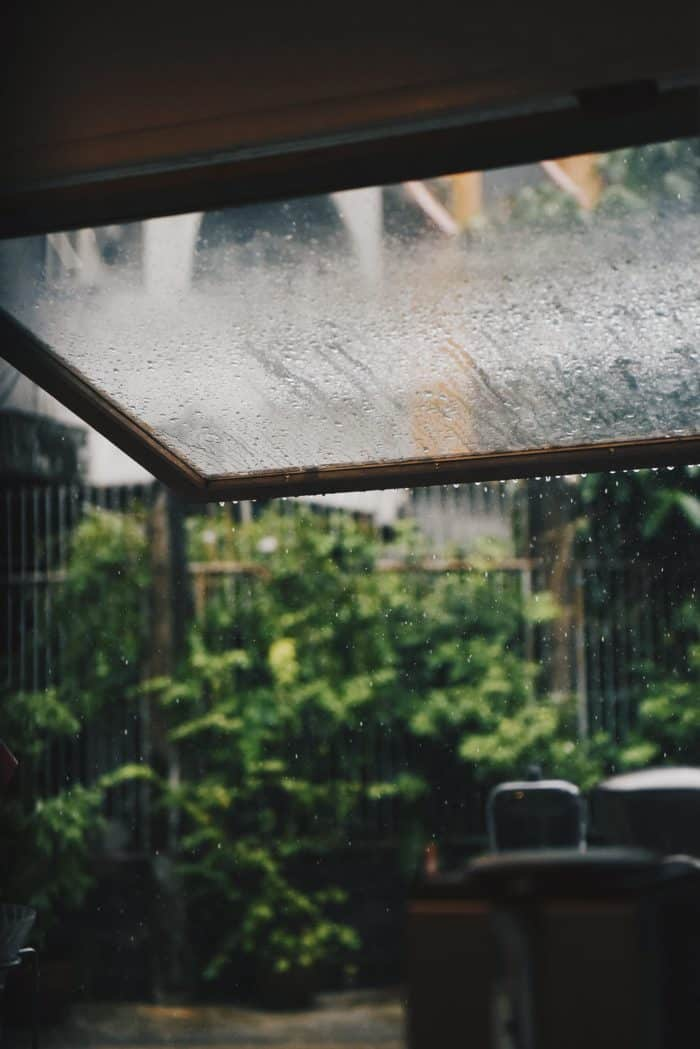 Keep track of rainfall is economical in keeping your plants watered down